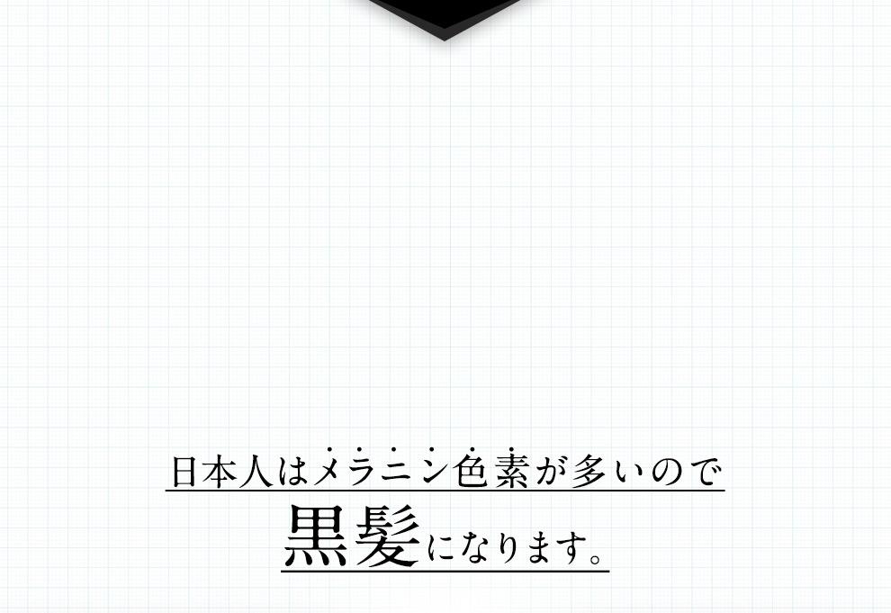 日本人はメラニン色素が多いので黒髪になります