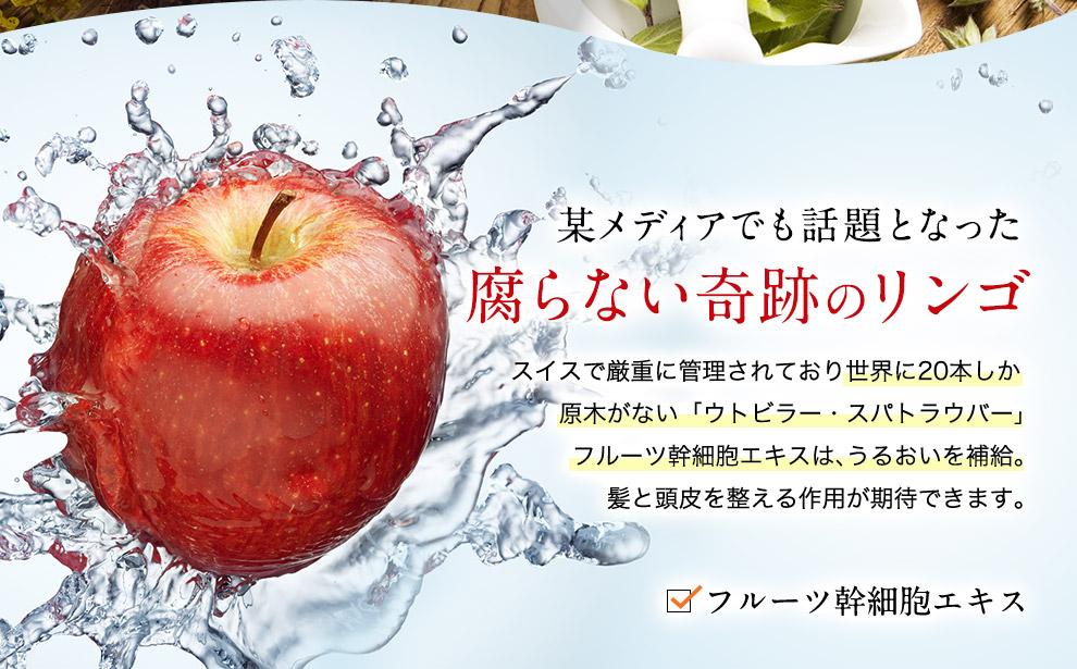 腐らない奇跡のリンゴ フルーツ幹細胞エキスはうるおいを補給 髪と頭皮を整える作用が期待できます