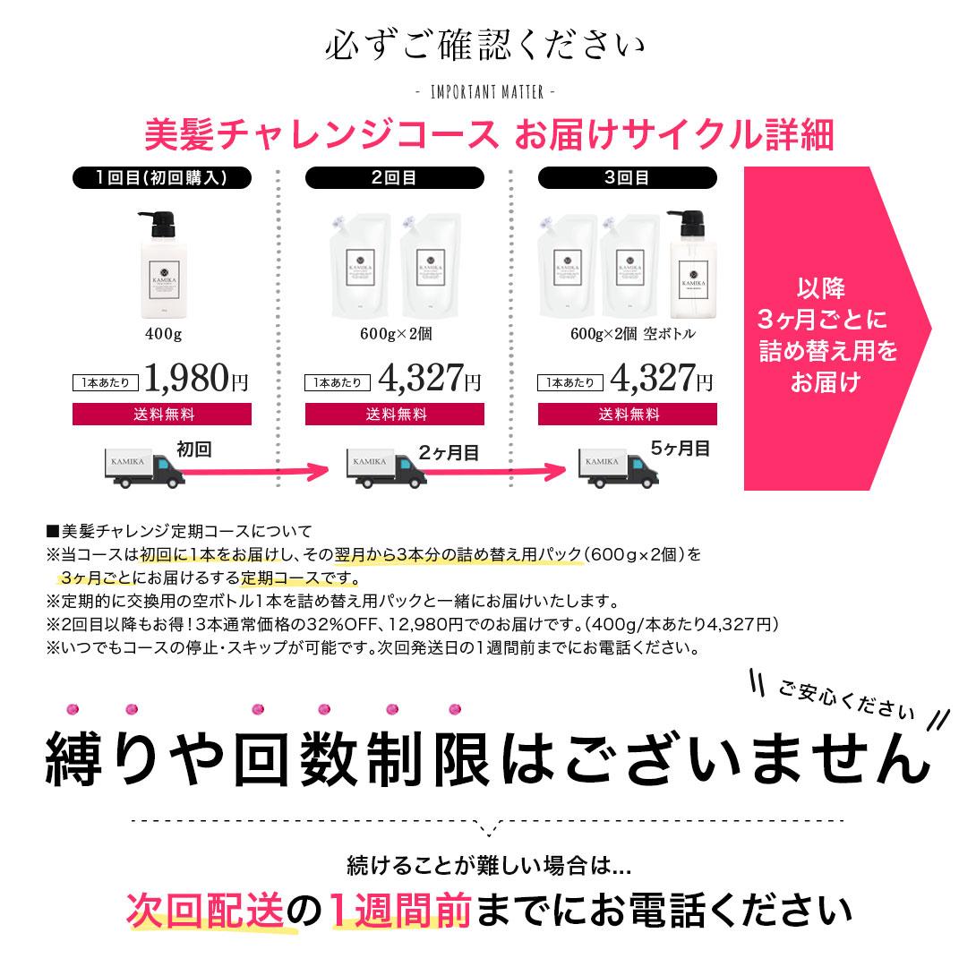 美髪チャレンジコース お届けサイクル詳細